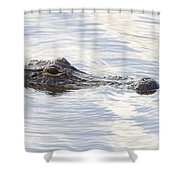 Alligator With Sky Reflections - A Closer View Shower Curtain