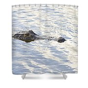 Alligator With Sky Reflections Shower Curtain