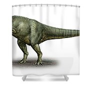 Allosaurus Fragilis, A Prehistoric Era Shower Curtain