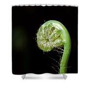 Almost Ready Shower Curtain