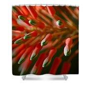 Aloe Bloom Shower Curtain