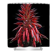 Aloe Flowers Shower Curtain