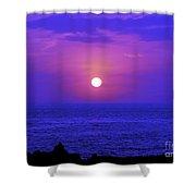 Aloha Iv Shower Curtain