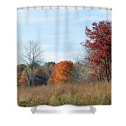 Alone With Autumn Shower Curtain