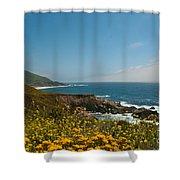 Along Big Sur Shower Curtain