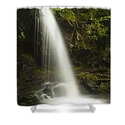 Alongside Grotto Falls Shower Curtain by Andrew Soundarajan