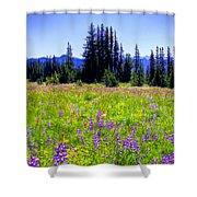 Alpine Meadow V At Mount Rainier Shower Curtain