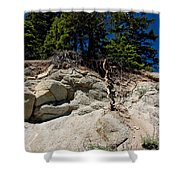 Alpine Pine Hangs On For Life Shower Curtain