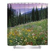 Alpine Wildflower Meadow, Mount Shower Curtain