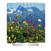 Alpine Wildflowers Shower Curtain