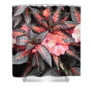 Amazing Hues Of Nature Shower Curtain