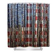 America Still Beautiful Shower Curtain