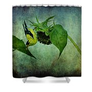 American Goldfinch II Shower Curtain
