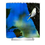 American Goldfinch Leaving Shower Curtain