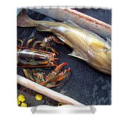 American Lobster And Cod Caught Off Chatham On Cape Cod Shower Curtain