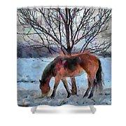 American Paint In Winter Shower Curtain by Jeff Kolker