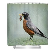 American Robin With Worms Shower Curtain