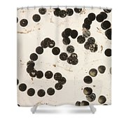 American Toad Eggs Shower Curtain