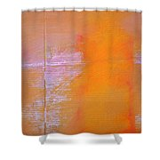 Amethyst Meridian Shower Curtain