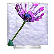 Amethyst Sapphire And Gold Shower Curtain