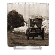 Amish Buggy And Wagon Shower Curtain