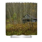 Among The Birches 0020 Shower Curtain