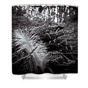 Among Thorns Shower Curtain