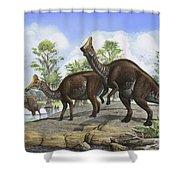 Amurosaurus Riabinini Dinosaurs Grazing Shower Curtain