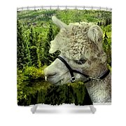 An Alpaca In Vail Shower Curtain