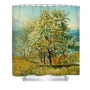 An Alpine Lake Shower Curtain