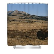 An American Bison Standing Shower Curtain