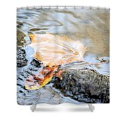 An Autumn Day's Rest Shower Curtain