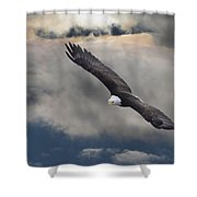 An Eagle In Flight Rising Above The Shower Curtain by Robert Bartow