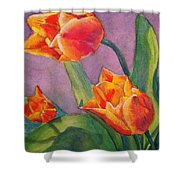 An Early Bloom Shower Curtain