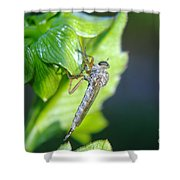 An Insect Resting  Shower Curtain