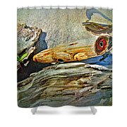 An Old Warrior Comes Home Shower Curtain