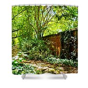 Ancient Path Shower Curtain