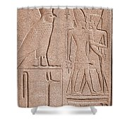 Ancient Stone Carvings, Karnak, Egypt Shower Curtain