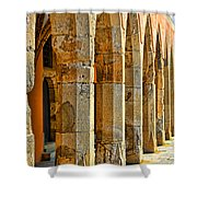 Ancient Thoughts Shower Curtain