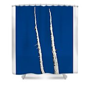 Ancients Stand Shower Curtain