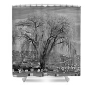 And The Willow Tree Weeps Shower Curtain