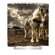 Angel And Lad  Shower Curtain