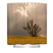Angel From Heaven Shower Curtain