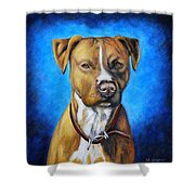 American Staffordshire Terrier Dog Painting Shower Curtain