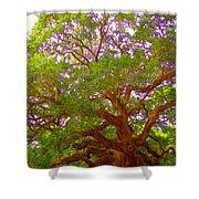 Angel Oak Tree1 Shower Curtain