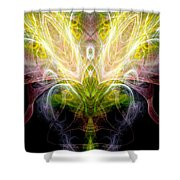 Angel Of Abundance Shower Curtain