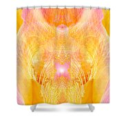 Angel Of Divine Protection Shower Curtain