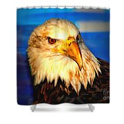 Angel The Bald Eagle Shower Curtain
