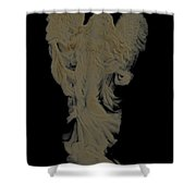 Angle Art Iv  Cameo Effect Shower Curtain