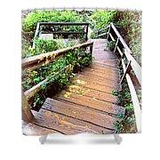 Angular Wooden Stairs Shower Curtain